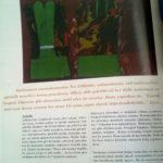 Nur Gökbulut artist dergisi yazı